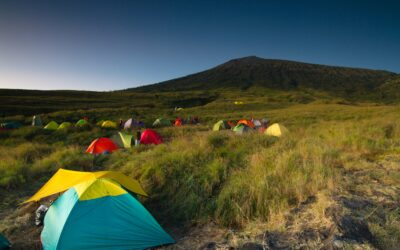 Extending Your Tent Pegs A Little Further